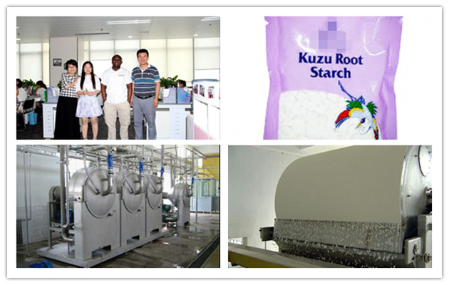 Kudzu Root Starch Production Li